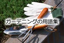 ガーデニング・園芸用語集